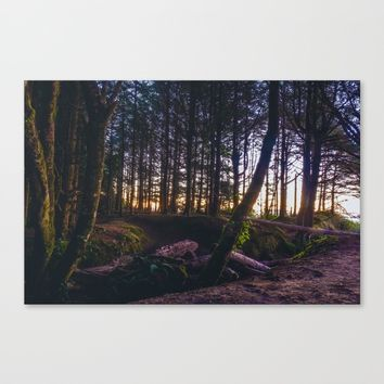 Wooded Tofino Canvas Print by Mixed Imagery