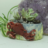 Octopus succulent planter  mini hand sculpted pottery planter