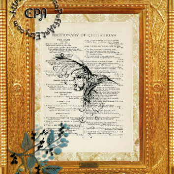 Black Drawing of a Hummingbird Art -  Beautifully Upcycled Vintage Dictionary Page Book Art Print