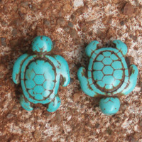 Patina-look Howlite Turquoise Turtle Beads (6)