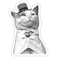 Like A Sir - Cat