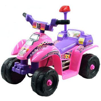 Lil' Rider? Princess 4 Wheel Mini ATV - Pink-Purple