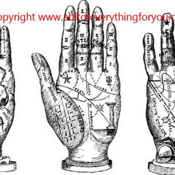 palm reading hands printable fortune teller art clipart png download digital vintage image graphics digital stamp line art celestial artwork