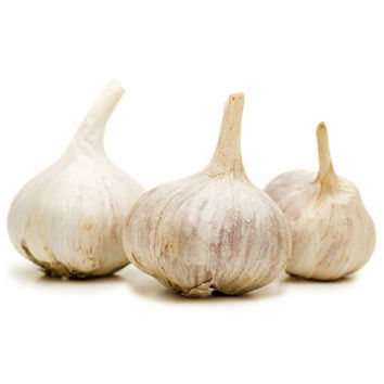 Whole Fresh Garlic Bulbs (2 lbs.)