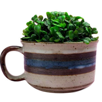 Stoneware Soup Mug Otagiri Horizon Succulent Planter Herb Garden Plant Pot Vintage Retro 70s Boho Kitchen Decor Striped Blue Brown Speckled