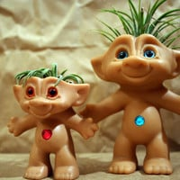 Treasure Troll Air Plant Pot with Plant (Large)