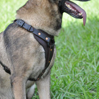 Chase Tactical Padded Tracking Harness