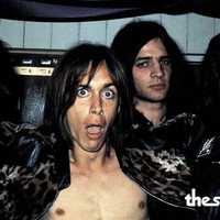 The Stooges Iggy Pop Poster 11x17