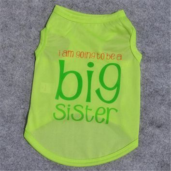 Big Sister Cat Shirt Costume in Multiple Colors