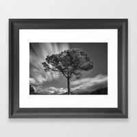Windy Tree. At the mountains Framed Art Print by Guido Montañés