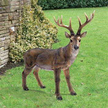 SheilaShrubs.com: Big Rack Buck Deer Statue JQ7105 by Design Toscano: Garden Sculptures & Statues