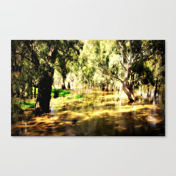 Flooded Plains Canvas Print by Chris' Landscape Images & Designs