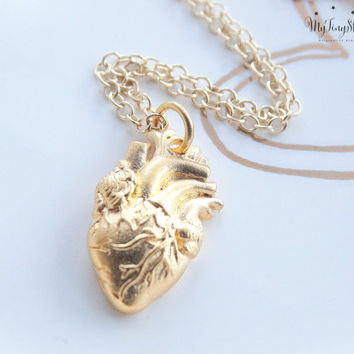 Anatomical heart Necklace Anatomical Heart Charm Heart necklace Anatomical heart charm heart necklace 14k Gold Necklace
