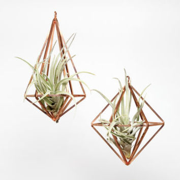 Set Of Two Copper Hanging Planters