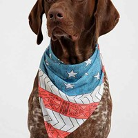 Bianca Green For DENY USA Pet Bandana