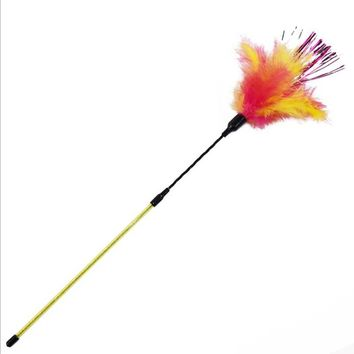 Funny Spiral Pet Cat Toy Colorful Feather Teaser Toy for Cats Kitten Colored Ribbon Teasing Stick Pet Products