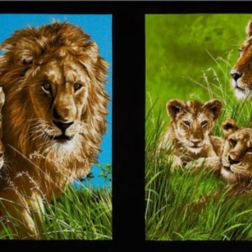 Quilting Panel, Cotton Panel, Lions by Exclusively Quilters, Cotton Fabric, Quilting Fabric, By the Panel