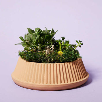 Umbra Shift Pleated Succulent Planter - Urban Outfitters
