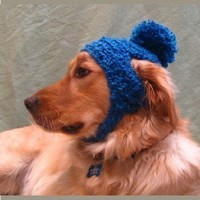 PDF Crochet Pattern for Poofball Dog Hat by OakStreetKnits on Etsy