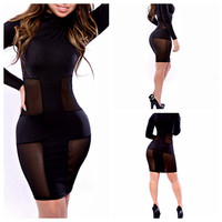 Black Long Sleeve Mesh Accent Bodycon Mini Dress