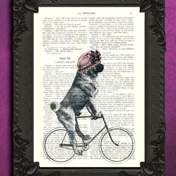 Pug with bonnet on bicycle, pug art, pug print, pug wall art, pug poster, pug illustration, bicycle art, dictionary art print
