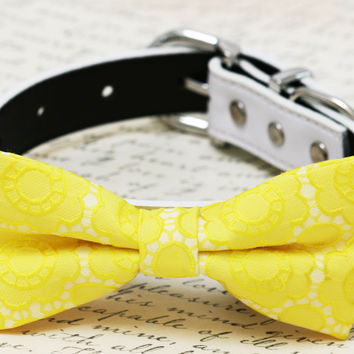 Yellow dog Bow tie, Yellow Floral dog bow tie,Yellow wedding dog collar,Dog birthday gift, Spring wedding, bow attached to white dog collar