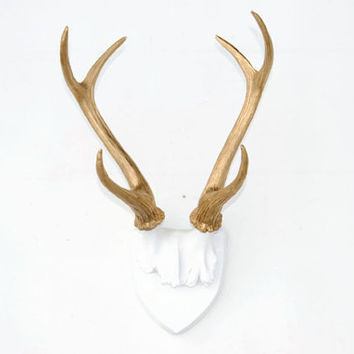 Faux Deer Antlers - White Plaque With Rich Gold Antlers - Wall Mount- Faux Taxidermy HT0108