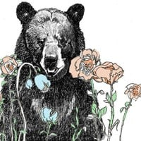 A Bear in Our Garden - Bear Art Print