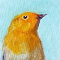 Bird Oil Painting, Original 4x4 on Canvas, Small Portrait, Miniature Painting, Wildlife Art