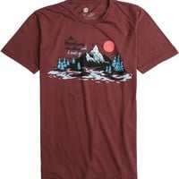 ELEMENT MOUNTAINS SS TEE | Swell.com