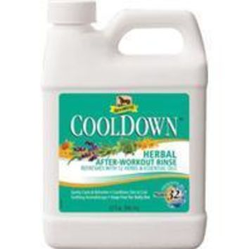 W F Young Inc - Absorbine Cooldown Herbal After Workout Rinse