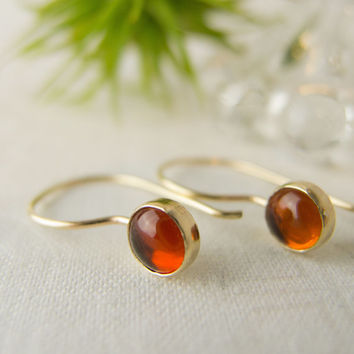 Amber and Gold Earrings, Amber Jewelry, Gold Dangle Earrings, Amber Drop Earrings, Minimalist Gold Earrings, 14k Solid Gold Earrings, Baltic