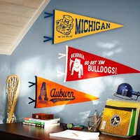 Collegiate Felt Pennants
