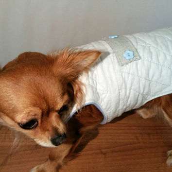 Dog coat - handmade - size xsmall dog coat - fleece lining dog coat - warm dog coat - baby blue dog coat
