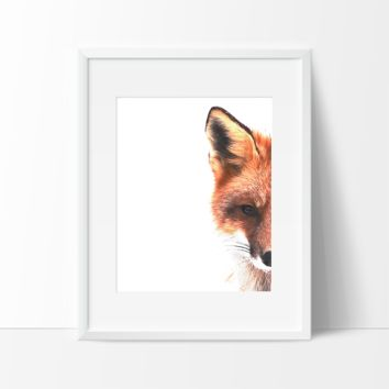 Up Close Fox Digital Sketch in Color, Wall Art, Modern Prints