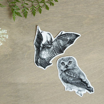 Temporary Tattoos Bat and Owl Nocturnal Creatures (Includes 2 Tattoos)