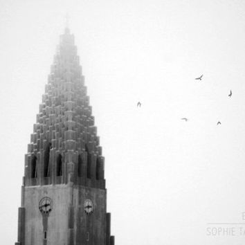Black and white canvas, flying birds, church canvas, architecture, minimalist wall art, fine art photography,16x24,24x36,32x48, canvas print