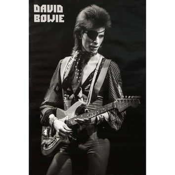David Bowie Import Poster