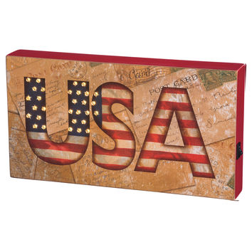 USA Illuminated Box Sign