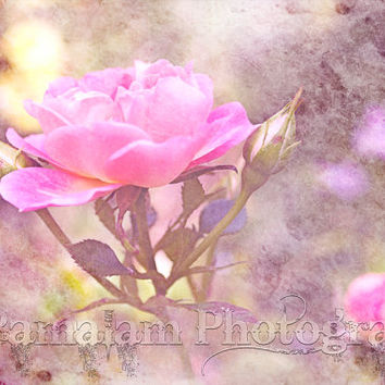 Pink Rose Instant Download, Textured, Distressed Journal Page, Digital Scrap Book, Printable Wall Art,