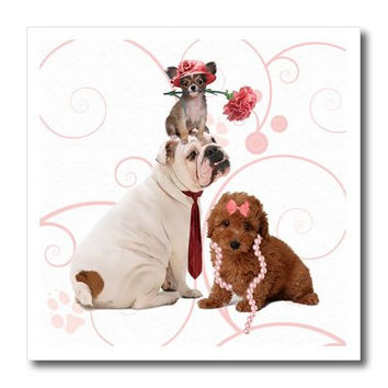 3dRose ht_127599_2 Bulldog in Necktie, Papillon Dog in Pink Hat a Terrier in Pearls Iron on Heat Transfer for White Material, 6 by 6-Inch