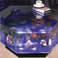 Fish Tank Coffee Tables - Opulentitems.com