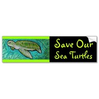 Green Sea Turtle Bumper Sticker from Zazzle.com