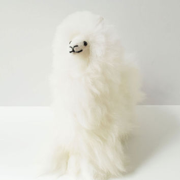 Angelica Alpaca Stuffed Animal