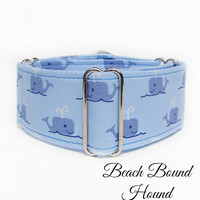 "Nautical Martingale Dog Collar, Summer Whales Blue 2"" martingale, great dane collar, italian greyhound, whippet, boxer dog, wolfhound, galgo"