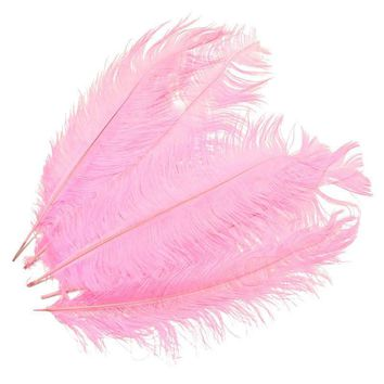 5 Piece Set of Beautiful Large Ostrich Feathers