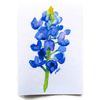Bluebonnet Watercolor ACEO Fine Art Print