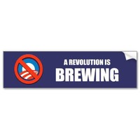 Anti-Obama - a revolution is brewing Bumper Sticker from Zazzle.com