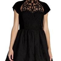 Black Sheer Mesh Embroidered Jacquard A-Line Mini Dress