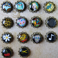 2g 0g 00g (6-10mm) / Photo Image / Plugs Gauges Stretchers Earrings / Stretched Gauged Ears